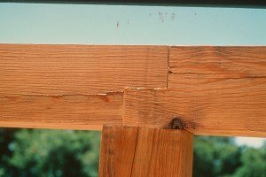 Cracked timbers