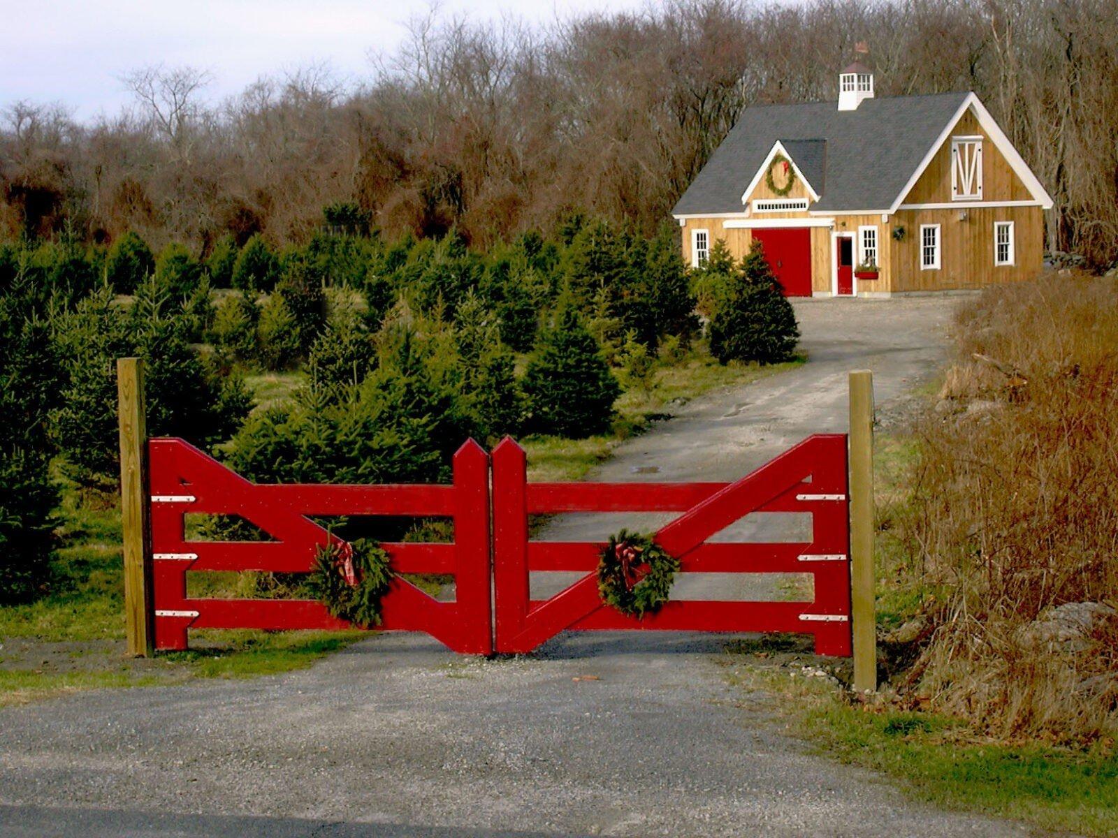 Yankee Barn Homes Christmas Tree Barn