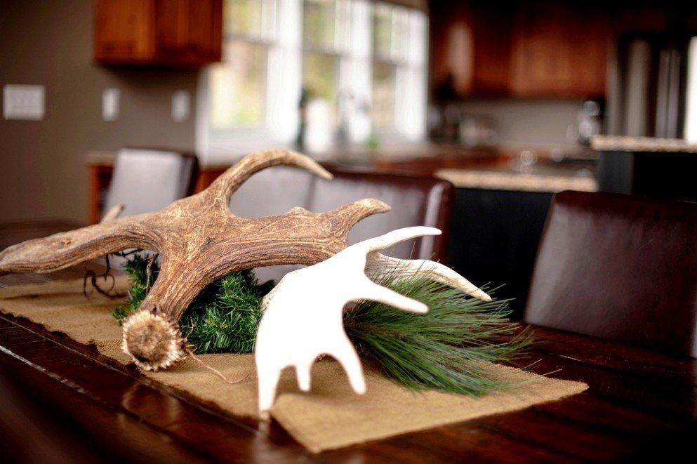 Antlers at Moose Ridge